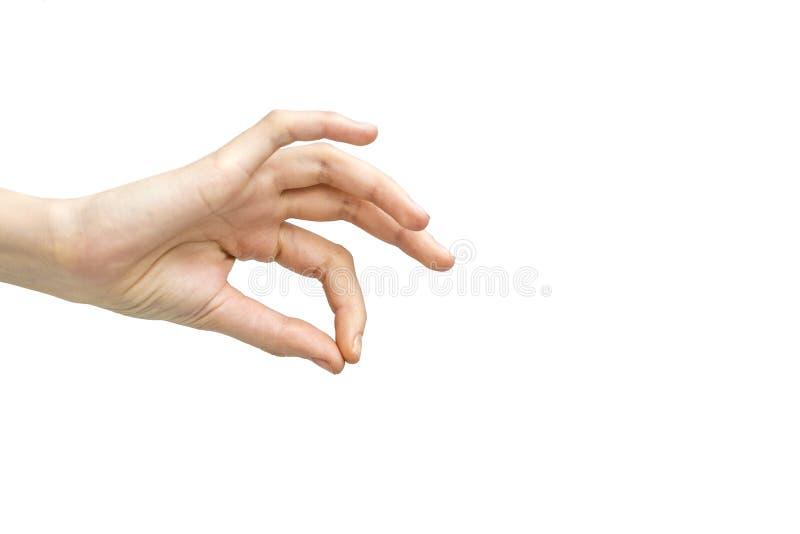 Рука женщины - выберите вверх изолированный на белой предпосылке стоковые фото