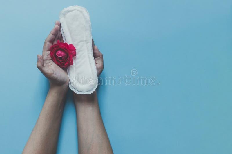 Рука женщины держа санитарные салфетки с красной розой на ей Концепция дней периода показывая женственный менструальный цикл Hygi стоковая фотография rf