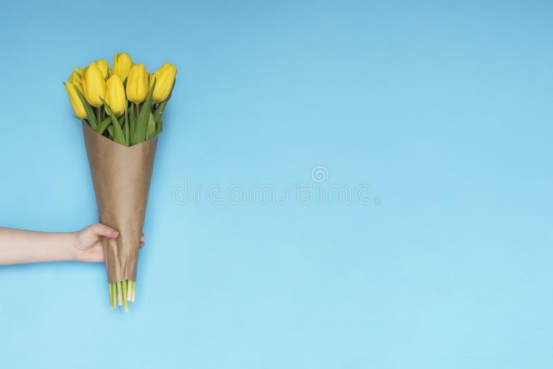 Рука женщины держа тюльпан букета желтый цветет на голубой предпосылке Плоское положение, взгляд сверху Предпосылка цветка тюльпа стоковое фото rf