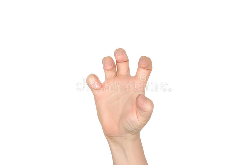 Рука женщины изолированная на белизне стоковые изображения