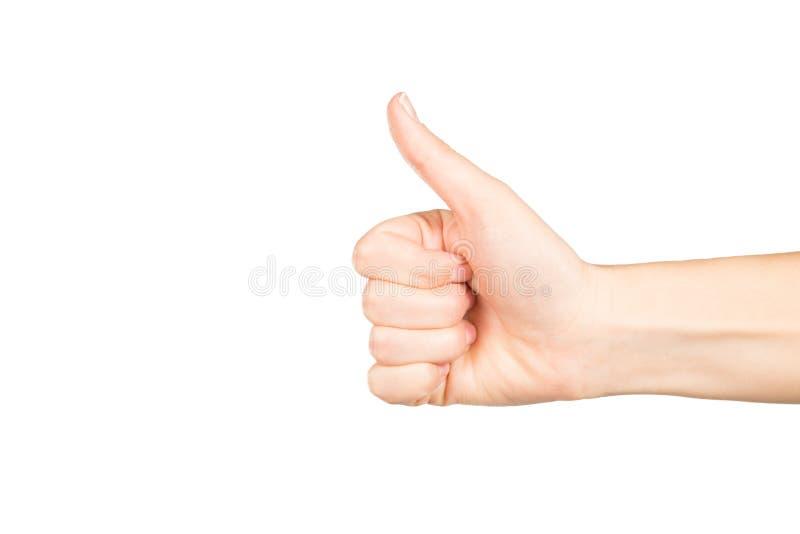Рука женщины на белой предпосылке стоковая фотография rf