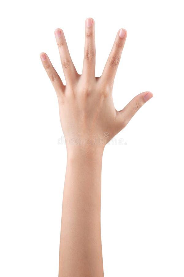 потом картинки про правую руку внутренней отделке можно