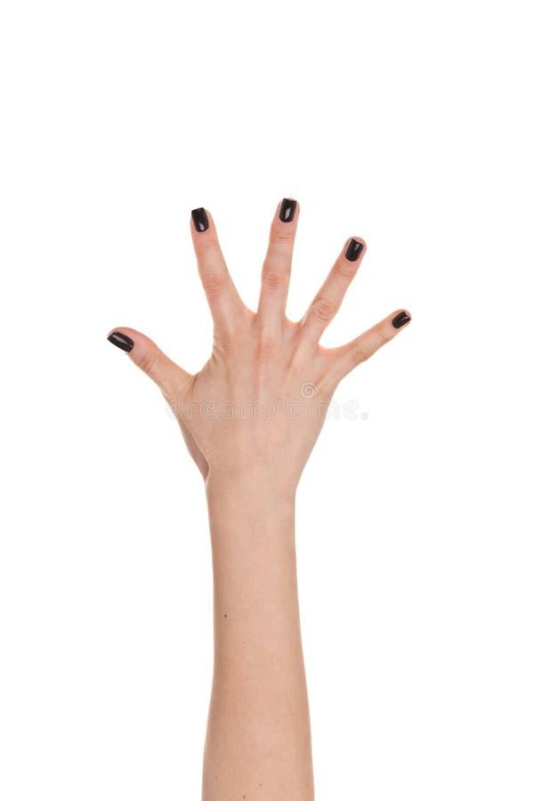 Рука женщины показывая 5 пальцев изолированных на белом backgrou стоковое фото