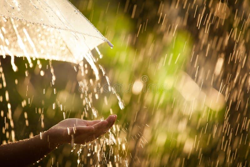 Рука женщины с зонтиком в дожде стоковые фотографии rf