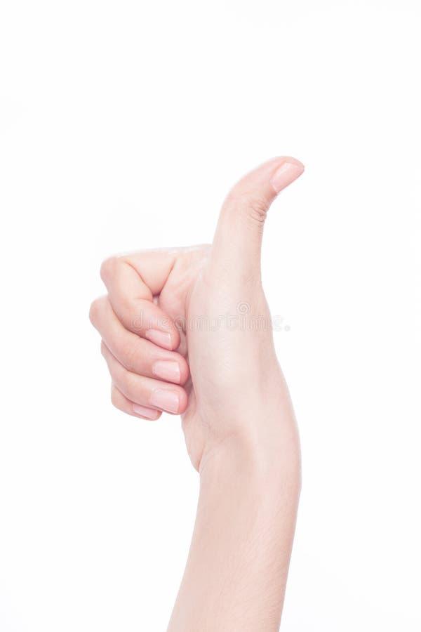 Рука женщины thumbs вверх стоковые изображения