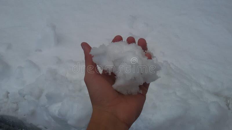 Рука зимы снега держа снег белый стоковое фото