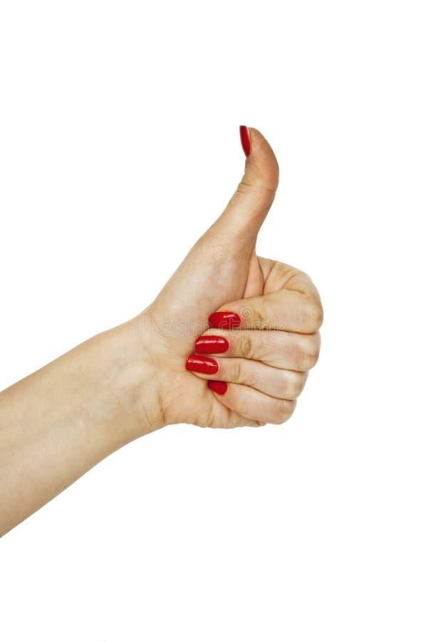 Рука изолированная на белом показывая большом пальце руки вверх по жесту стоковое фото rf