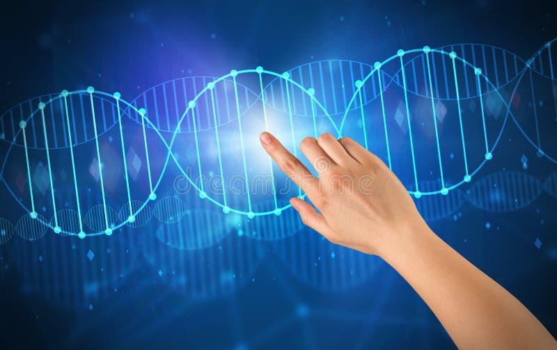 Рука касаясь молекуле ДНК стоковое фото