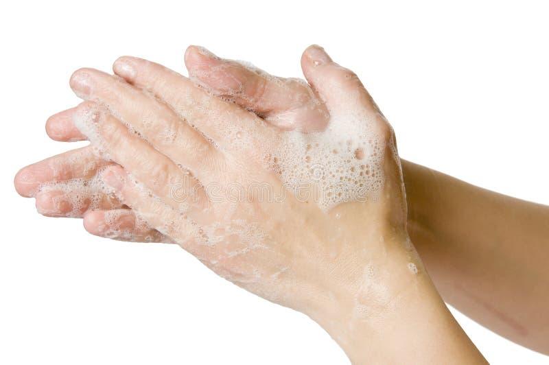 Рука моя плоско стоковая фотография rf