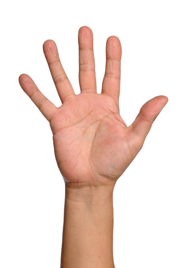 рука открытая стоковое изображение