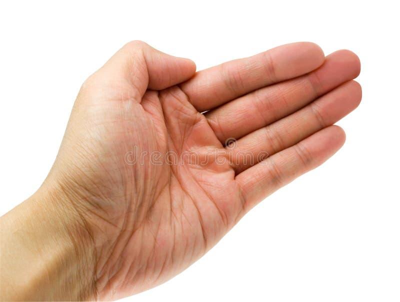 рука открытая стоковые фотографии rf