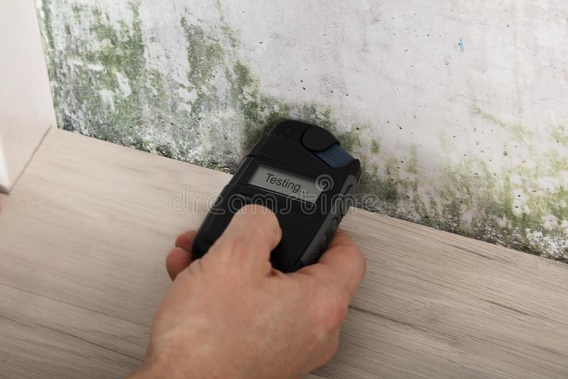 Рука персоны испытывая Moldy стену стоковые изображения
