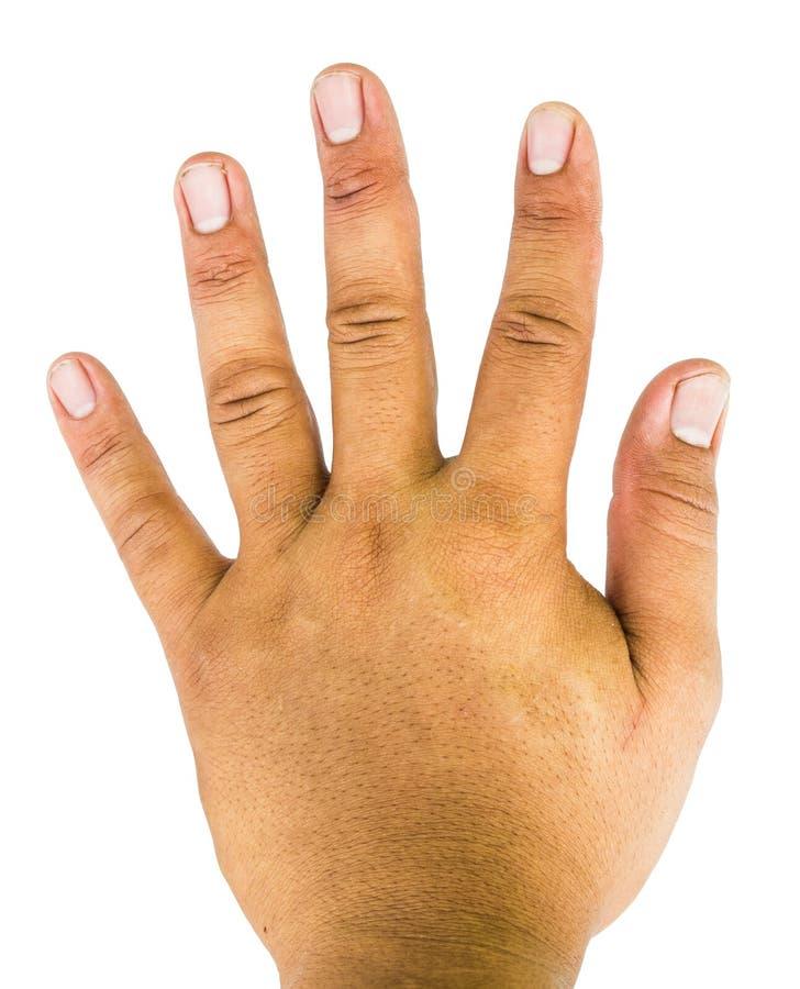 Рука показывая отсчет 5 стоковые фотографии rf