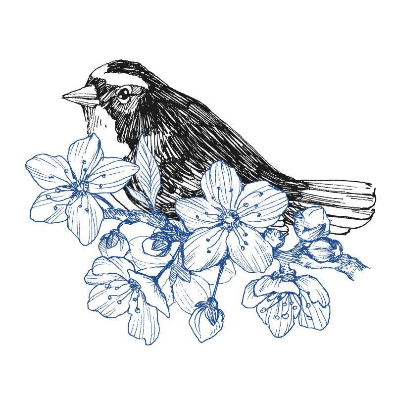 Рука птицы нарисованная в винтажном стиле с цветками Птица весны сидя на ветвях цветения Линейное выгравированное искусство биогр иллюстрация вектора