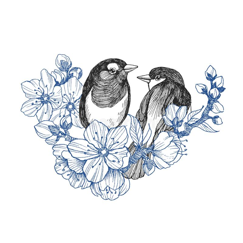 Рука 2 птиц нарисованная в винтажном стиле с цветками Птицы весны сидя на ветвях цветения Линейное выгравированное искусство биог иллюстрация вектора