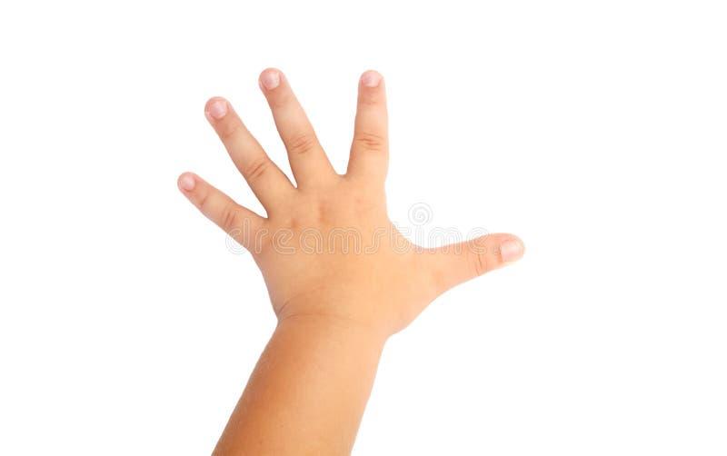 Рука ребенка на белизне стоковые изображения rf