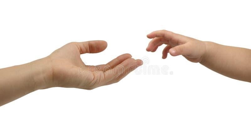 Рука ребенка достигая для взрослого стоковая фотография rf