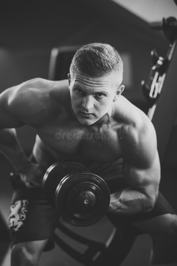 Рука строения человека культуриста muscles с гантелью в спортзале стоковые фото