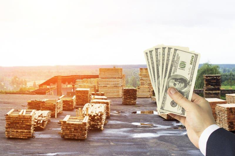 Рука с долларами денег на фоне склада с законченными досками, древесины, стелюги, долларов стоковое изображение rf