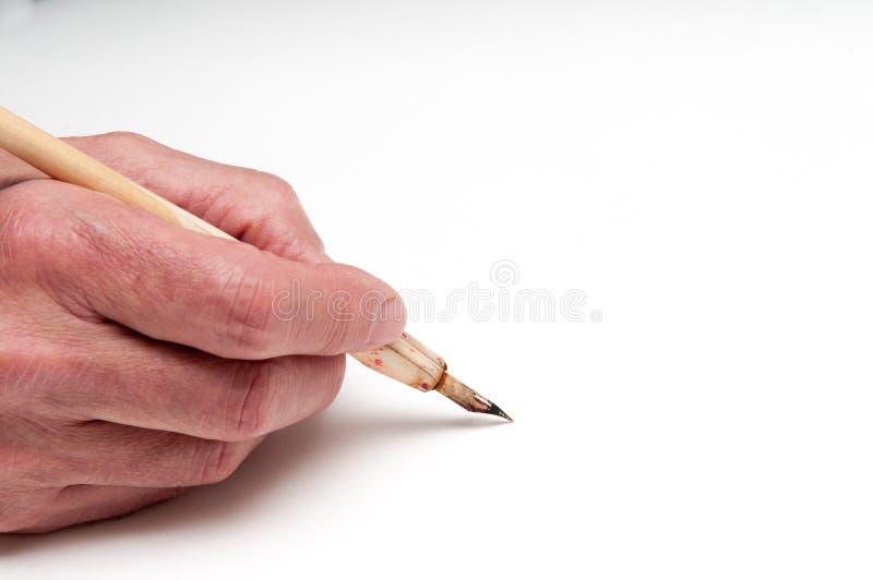 Рука с ручкой каллиграфии стоковые фотографии rf