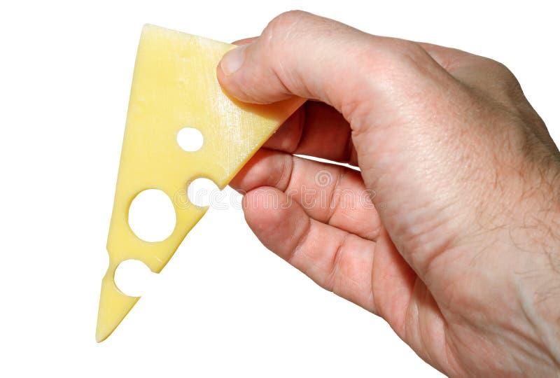 Рука с сыром стоковое изображение