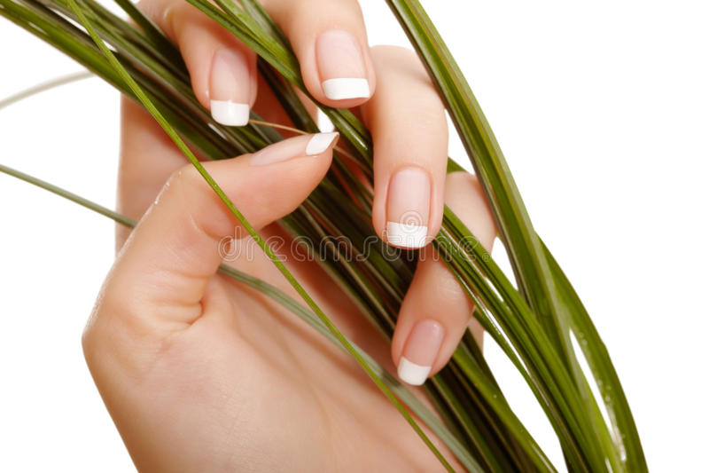 рука травы стоковые фото