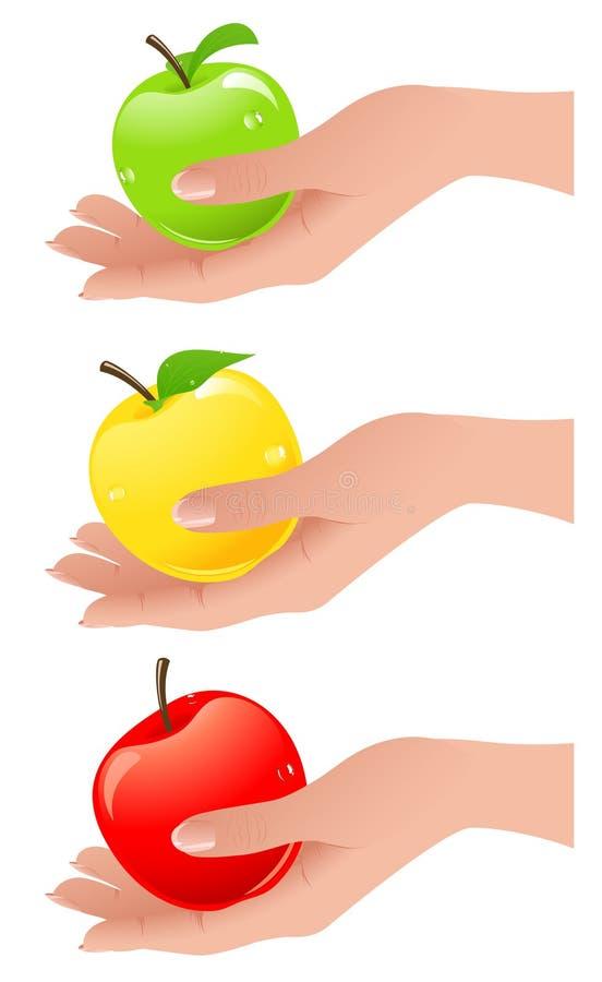 рука цветов яблок различная иллюстрация штока