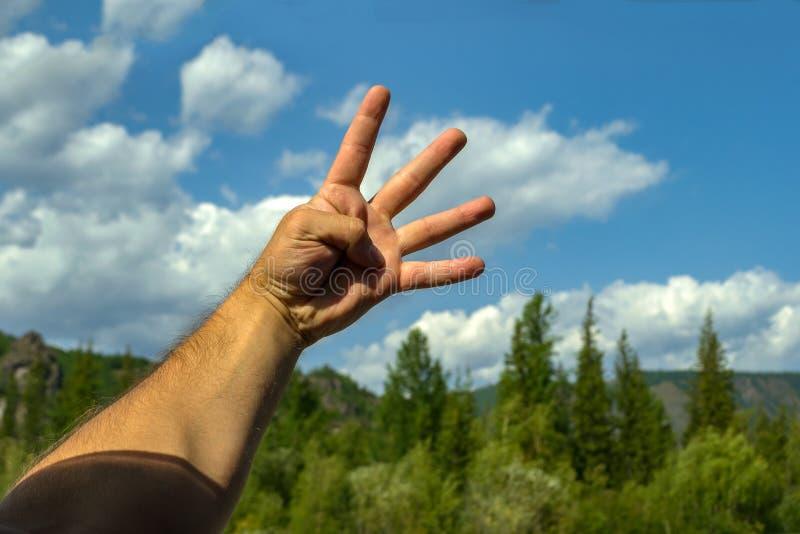 Рука человека, покрытая с волосами, открыта, показывающ знак f стоковые изображения