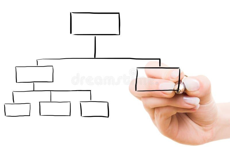 рука чертежа диаграммы стоковая фотография rf