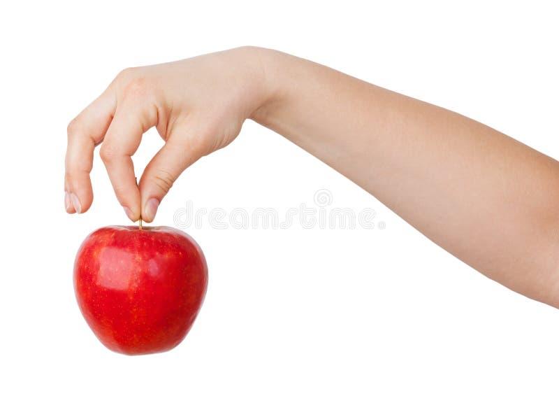 рука яблока его красный цвет зрелый стоковая фотография