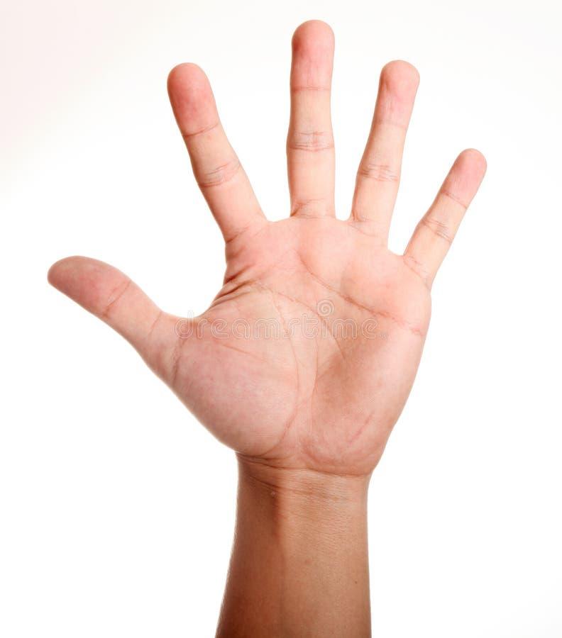 рука стоковое изображение