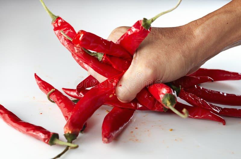 рука chili grabing стоковое фото