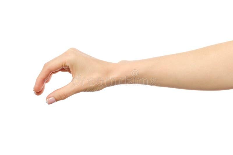 Рука ` s женщины хватая или измеряя что-то стоковые фотографии rf