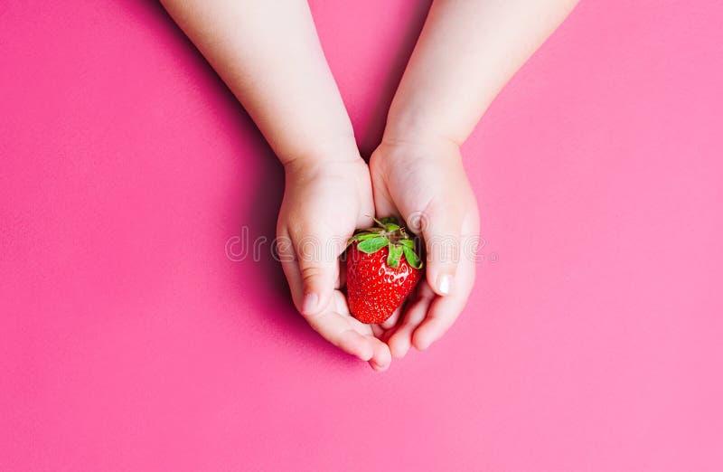 Рука ` s ребенка держа клубнику на розовой предпосылке, плите клубник еда принципиальной схемы здоровая Взгляд сверху, плоское по стоковая фотография rf