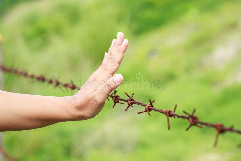 Руки вися на колючей проволоке старого металла ржавой стоковые изображения rf