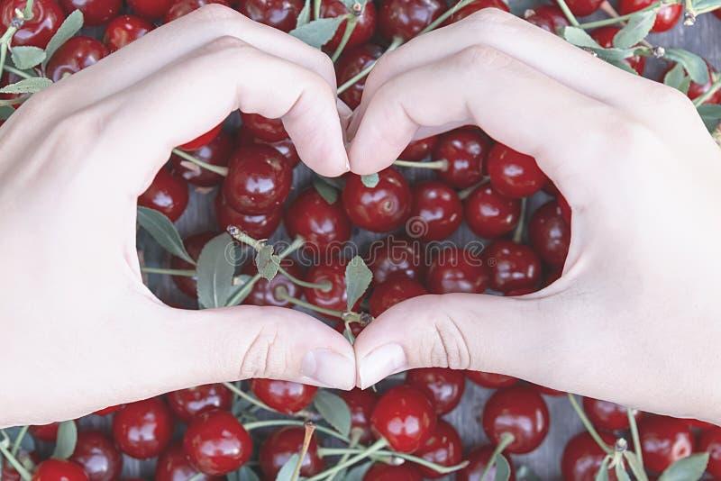 Руки в форме сердца держат вишню стоковая фотография rf