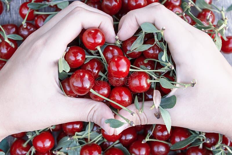 Руки в форме сердца держат вишню стоковая фотография
