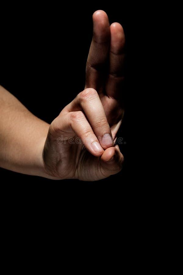 Руки в mudra стоковые изображения rf
