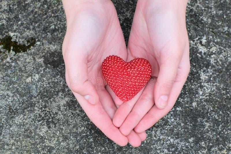 Руки девушки держа красное сердце стоковые изображения