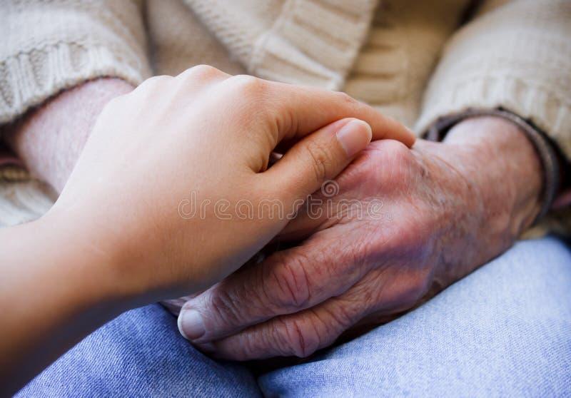 руки держа детенышей s старших стоковое фото rf