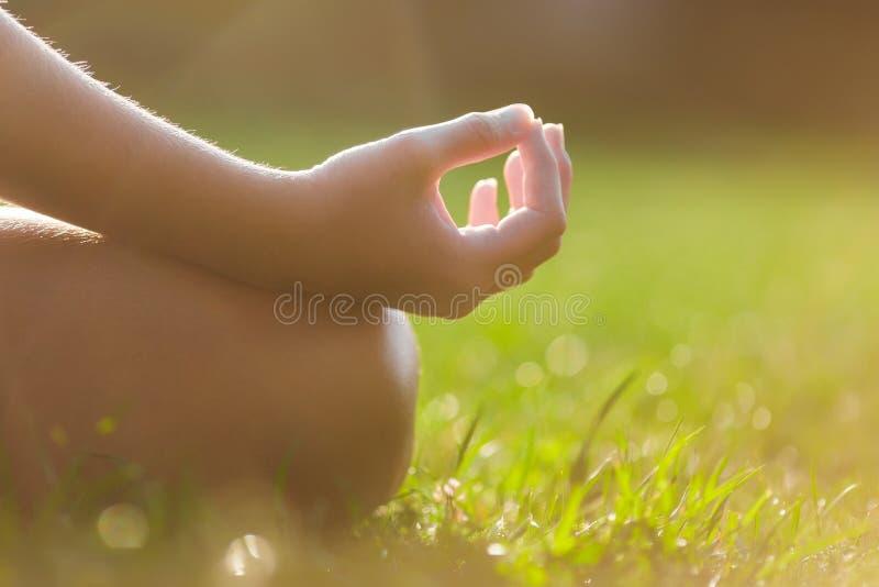 Руки девушки в представлении раздумья йоги стоковые фото