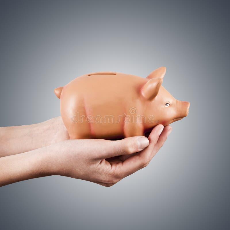 Рука с piggy банком стоковая фотография