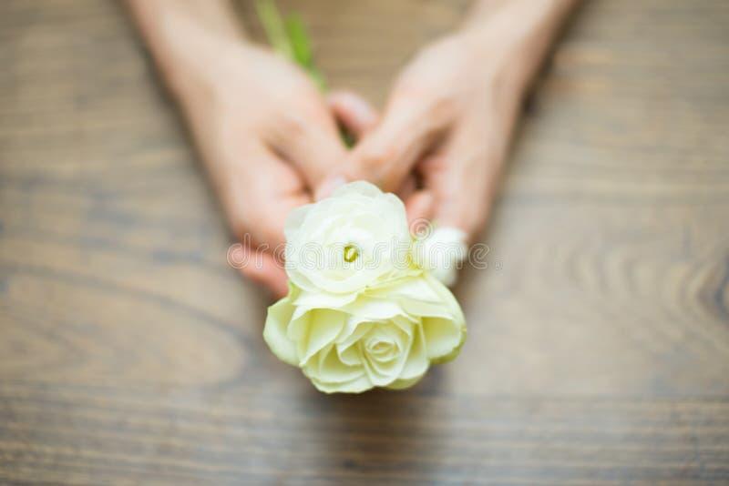 Руки держа белые цветки стоковые фото