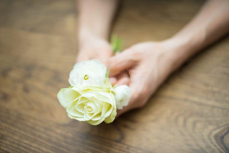 Руки держа белые цветки стоковое фото rf