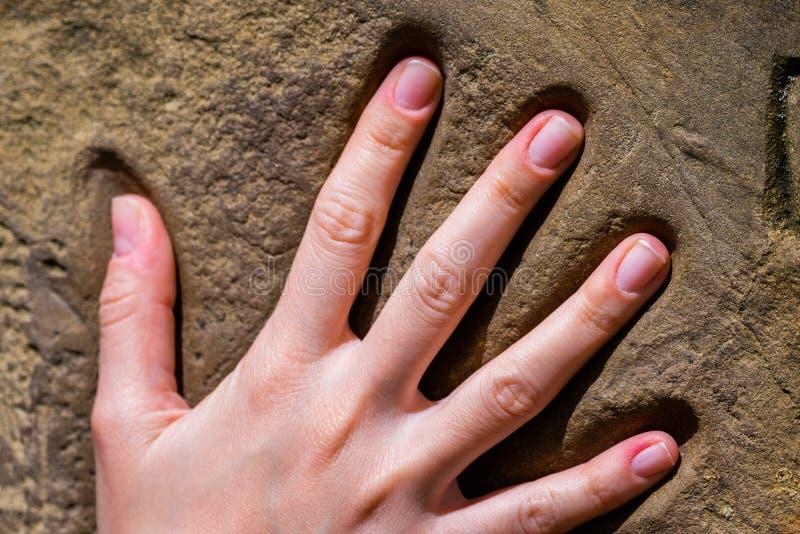 Руки женщины на камне Концепция для баланса, комбинации, жизни, сыгранности и так далее стоковое изображение rf