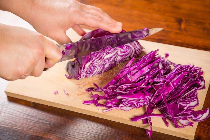 Руки женщины режа красную капусту стоковые изображения rf