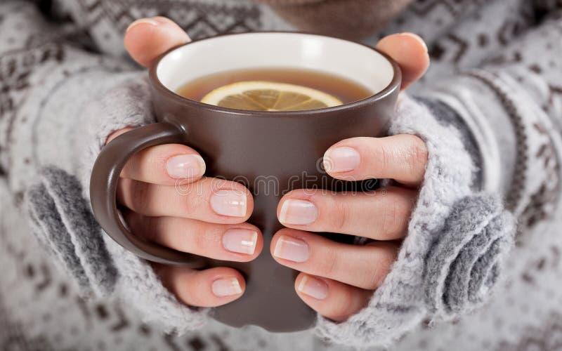 Руки женщины с горячим питьем стоковое изображение rf