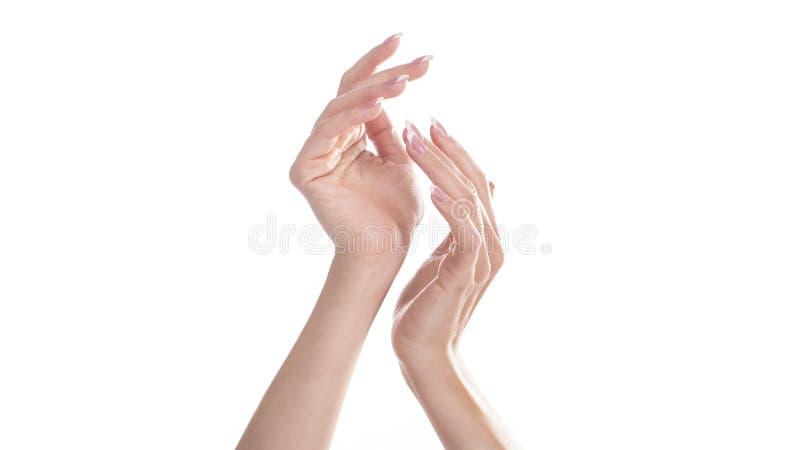 Руки женщины с красивым французским маникюром Изолировано на белизне стоковое изображение rf