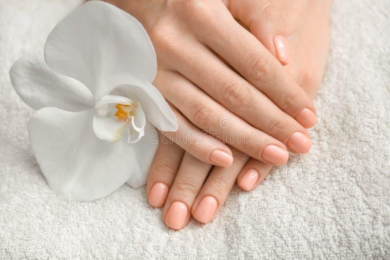 Руки женщины с красивым цветком маникюра и орхидеи на полотенце, крупном плане стоковые изображения rf