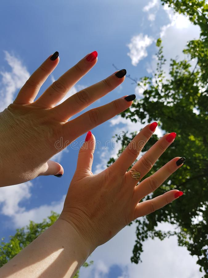 руки женщин стоковая фотография rf